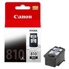 cartridge canon pg810